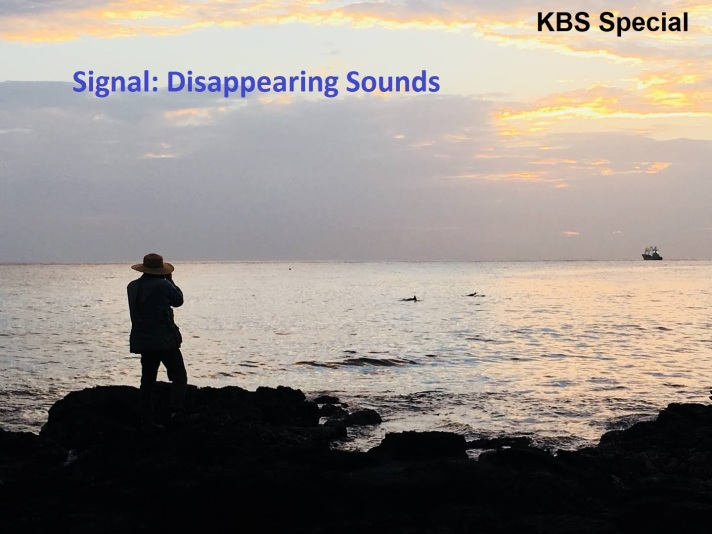 Signal_KBS_Special